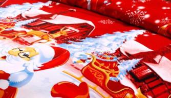 La coperta con Babbo Natale che avete sempre sognato può finalmente essere vostra… – Scadenza 25-30/11/2018